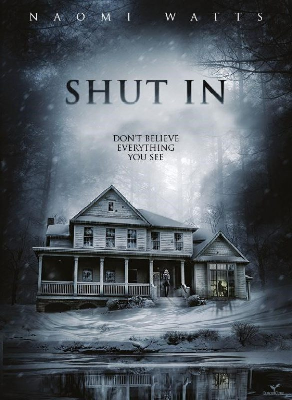 Afiche de Shut In