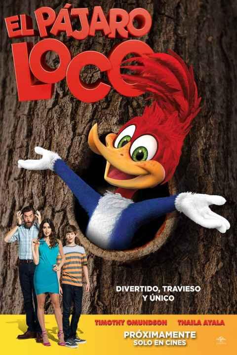 El Pájaro Loco se estrena en Chile el 4 de enero